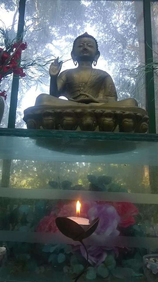 O Jardim do Dharma em cinco minutos