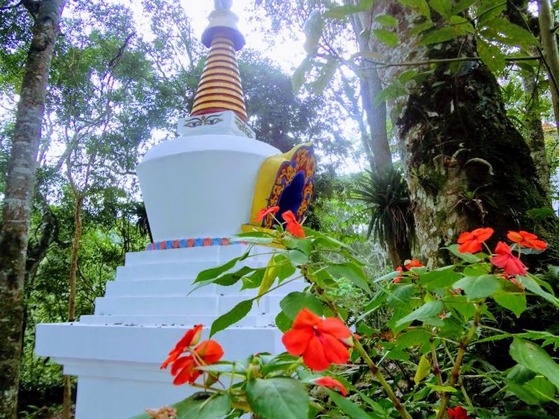 Faça parte do Jardim do Dharma!
